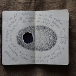 « Les nids » carnet