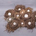 « Sans Titre » terre cuite, nids, 55 x 45 cm